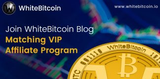 White Bitcoin (WBTC): Which Cryptocurrency Should You Use? | Trending Update News